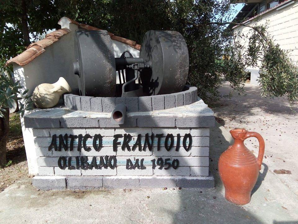 Visita frantoio Olibano